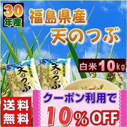 福島県産天のつぶ(5kg×2)