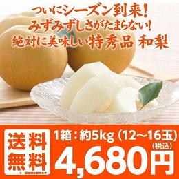 福島県産 梨 5キロ