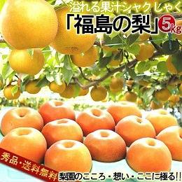 福島県産 梨 約5kg