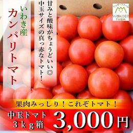 中玉トマト3kg箱詰め