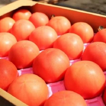 大玉トマト4kg箱