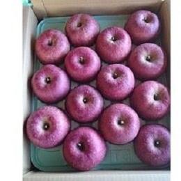 福島産 りんご 1箱 約10kg