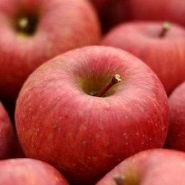 しのぶの里のリンゴ 5kg