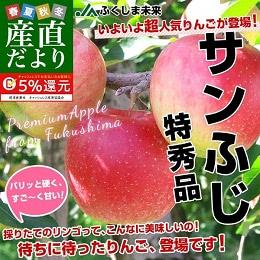 サンふじりんご特秀品 2.5kg
