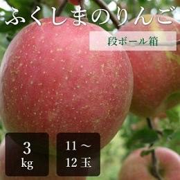 ふじりんご 特選品 3kg箱
