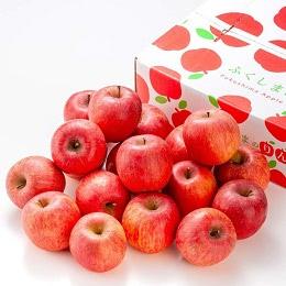 福島県産 サンふじりんご 5kg