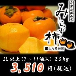 会津みしらず柿 2.5kg
