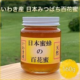 日本みつばち百花蜜 160g