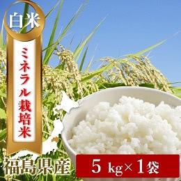 福島県産コシヒカリ 白米5kg
