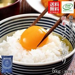中通産コシヒカリ 精白米 5kg