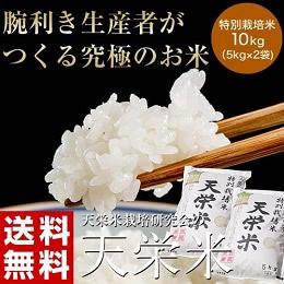 特別栽培米天栄米 10kg