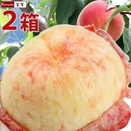 白桃系多種 特秀品 1.8kg