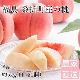 福島県桑折町産の桃 約5kg