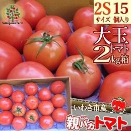 完熟朝どり新鮮 特別栽培トマト