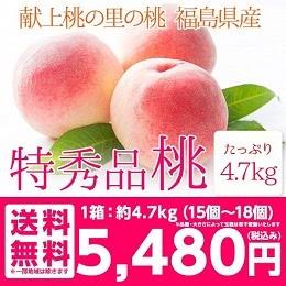 特秀品 桃 4.7kg