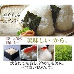 福島中通り産 コシヒカリ20kg