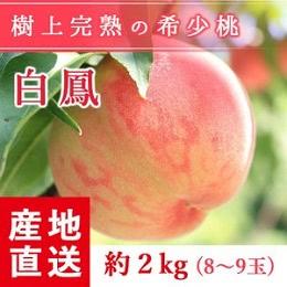 桃 もぎたて完熟 白鳳 約2kg