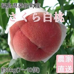 桑折町産 さくら白桃 約3kg
