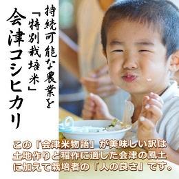 会津米物語コシヒカリ 5kg×4