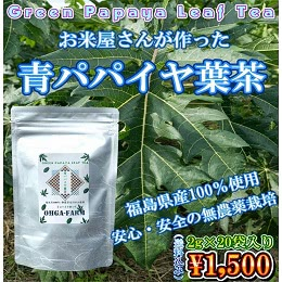 青パパイヤ葉茶 2g×20袋入り