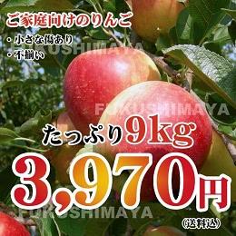 サンふじ りんご 約9kg