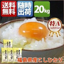 福島県産コシヒカリ 5kg×4袋