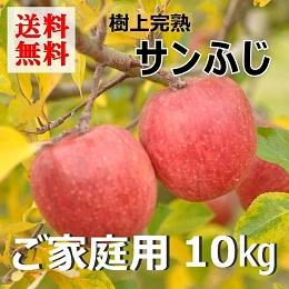 サンふじりんごご家庭用 10kg