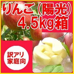 りんご 陽光 約4.5kg