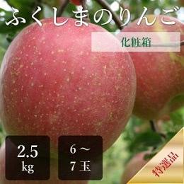 ふじりんご 特選品 2.5kg