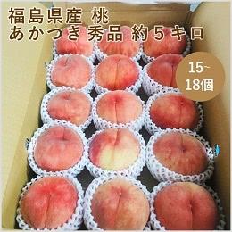 福島県産 桃 あかつき 約5kg