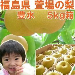 豊水 梨 5kg箱
