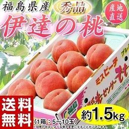 福島県産 伊達の桃 約1.5kg