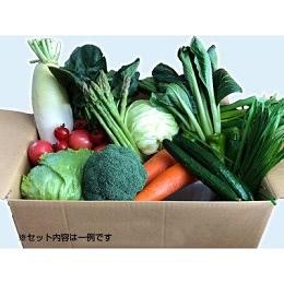 喜多方アスパラ野菜セット