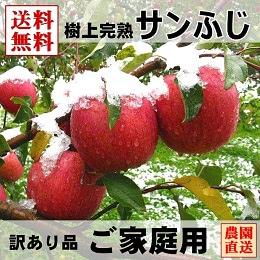 サンふじりんご ご家庭用訳あり品
