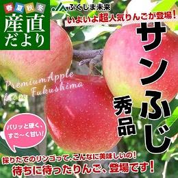 サンふじりんご 2.5kg