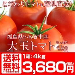 福島県産 大玉 トマト 4kg