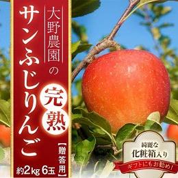 完熟サンふじりんご 約2kg
