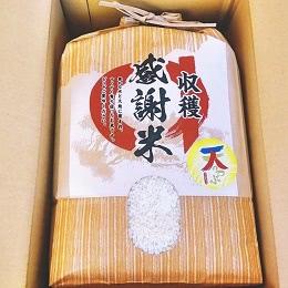 福島県中通り産 天のつぶ 5kg