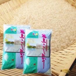 福島県産コシヒカリ 10kg