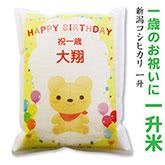 お子様の一歳のお祝いにかつぐ一升米です