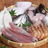 能生漁港で水揚げされた、本当に美味しい鮮魚セット
