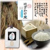 天日干しはざかけ米コシヒカリ 村松産5kg