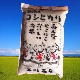 新潟産コシヒカリ5kg×2袋 招き猫袋で届けます