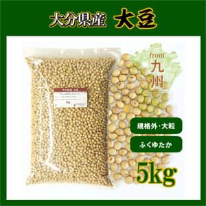 乾燥豆類/大豆