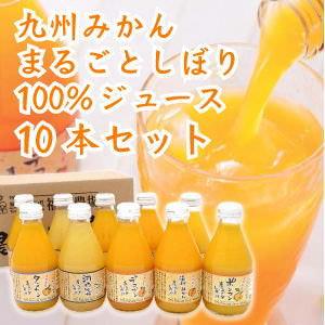 九州みかん100%ジュース10本セット