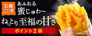 【特別誘導パック】★nagasakigoto