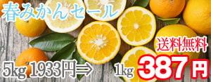 広告:tutiyama