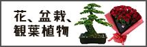 花、盆栽、観賞植物
