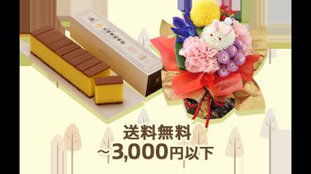 送料無料 ~3,000円以下