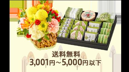 送料無料 3,001円~5,000円以下
